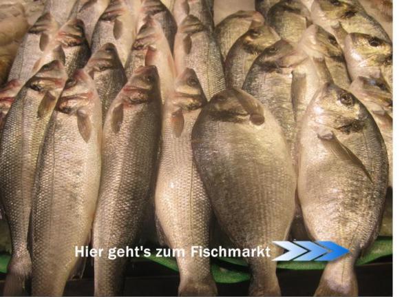 fischbanner